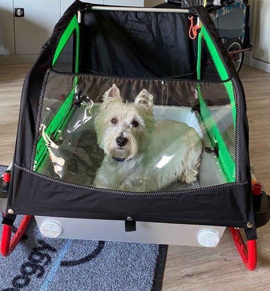 Sommer/Cabrio Verdeck für DoggyTourer